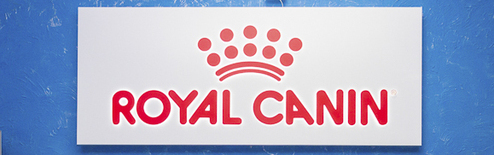 офис Royal Canin